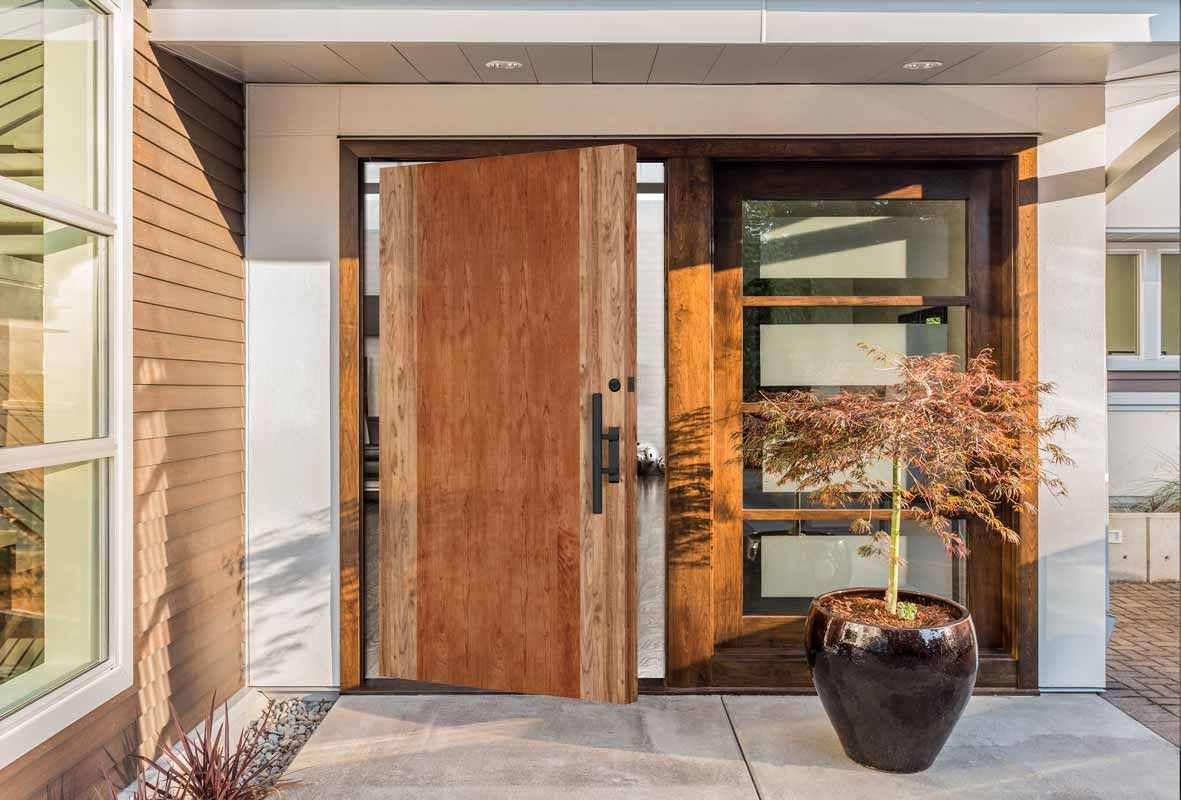 Contemporary Exterior Door
