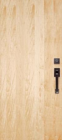 Maple  sc 1 st  Simpson Door & Personalize Your Contemporary Flush Door | Simpson Door Co.